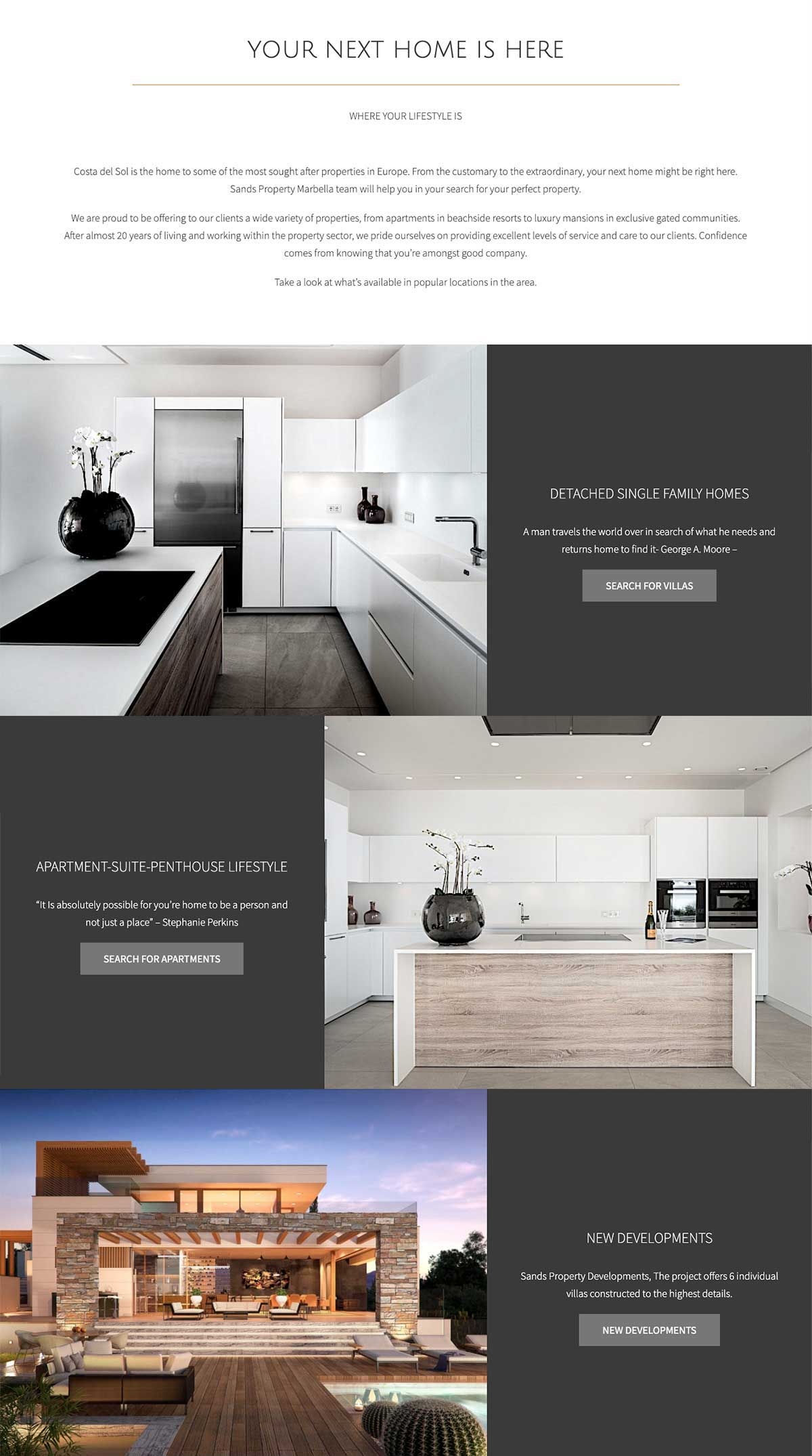 WordPress website design marbella real estate property website marbella