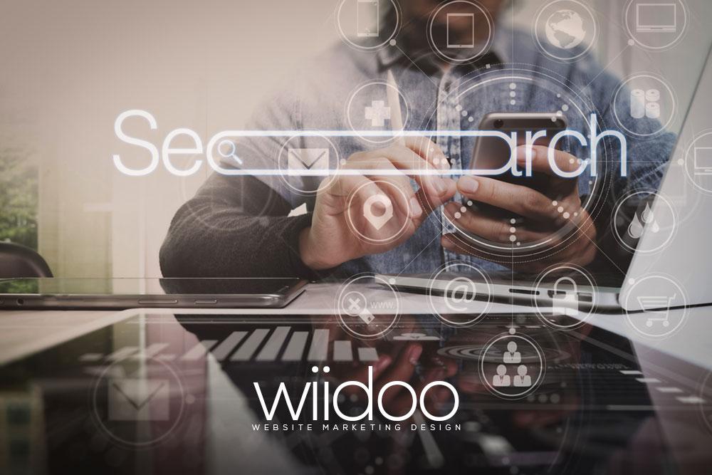 seo website optimisation website positioning 2021 search engine optimization wiidoo marbella
